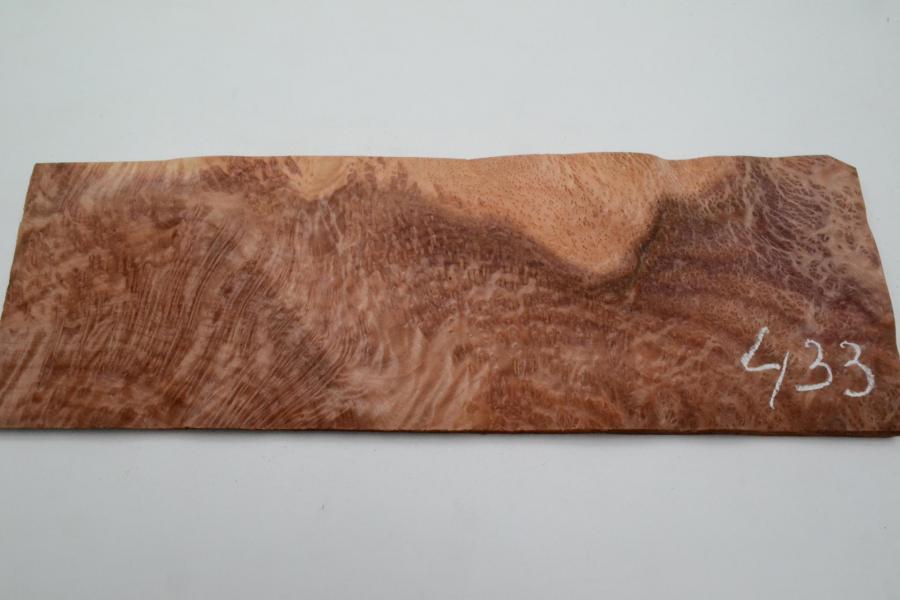 433 placage marqueterie loupe de sequoia vavona 1