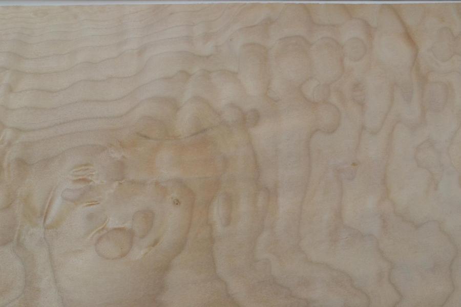 016 placage feuille de bois erable pommele 3