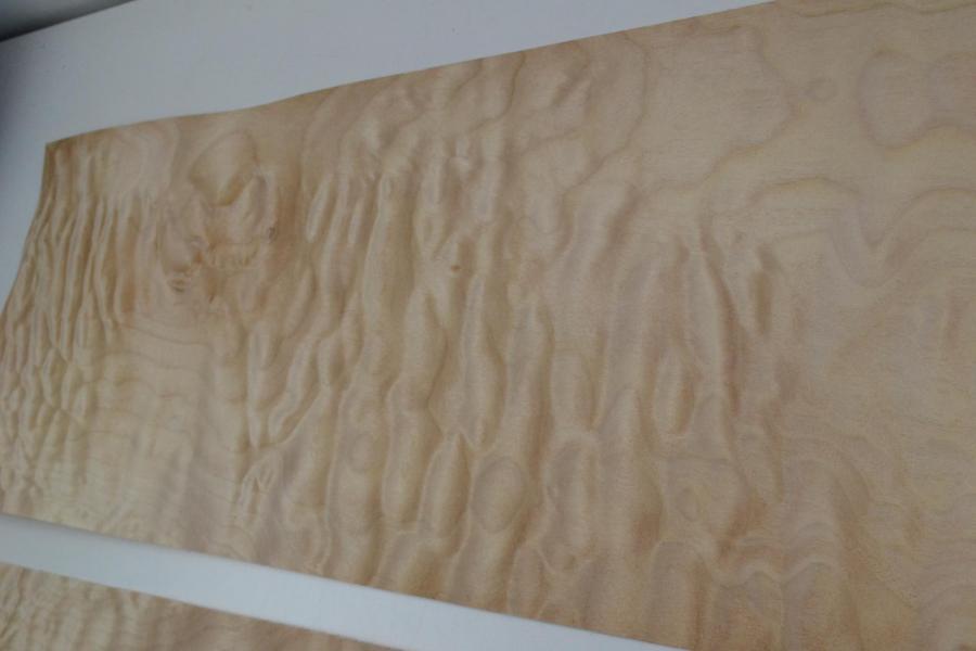 016 placage feuille de bois erable pommele 5