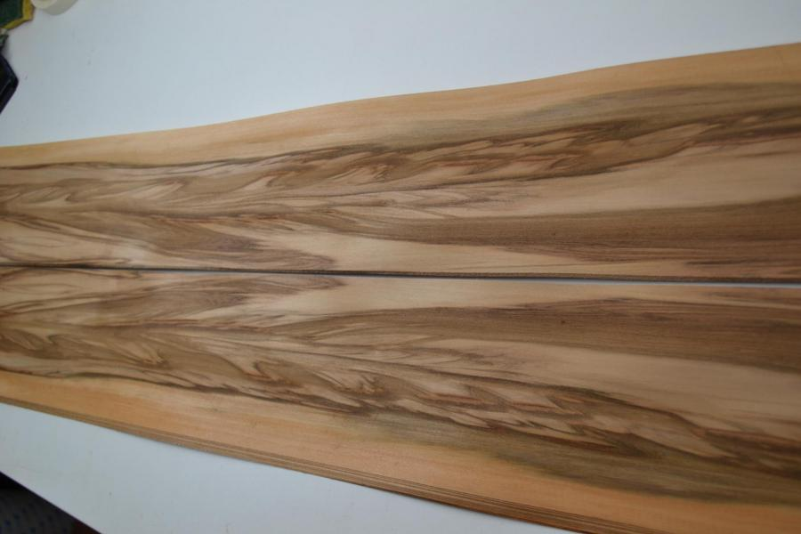 034 placage marqueterie satine red gum 3