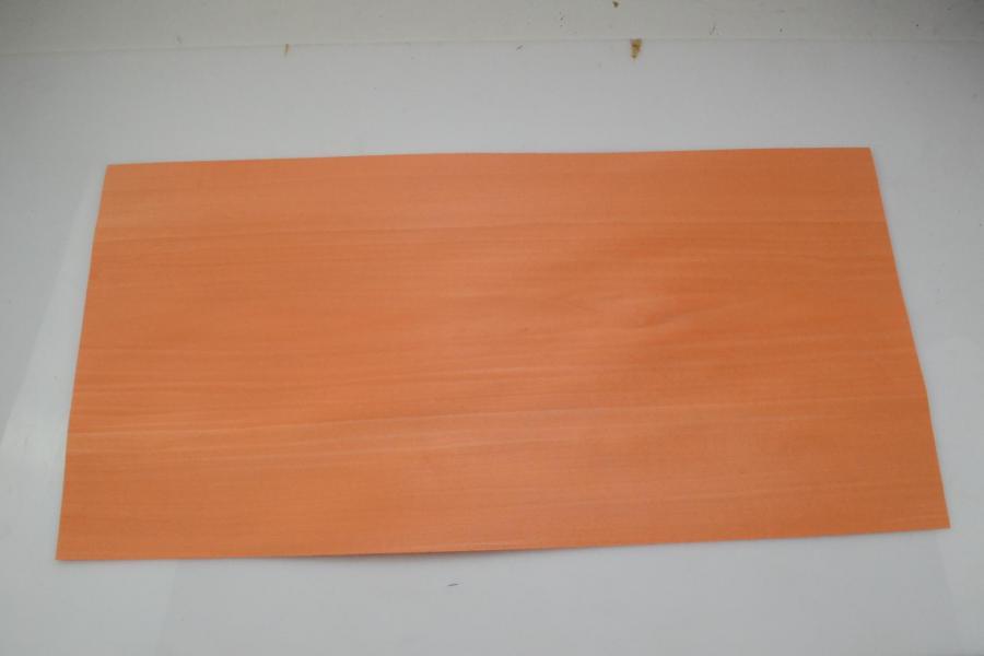 103a tulipier teinte orange 1