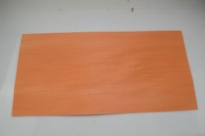 103a tulipier teinte orange 1