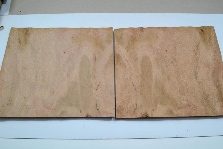 175 loupe d eualyptus marqueterie feuille de bois marqueterie 2