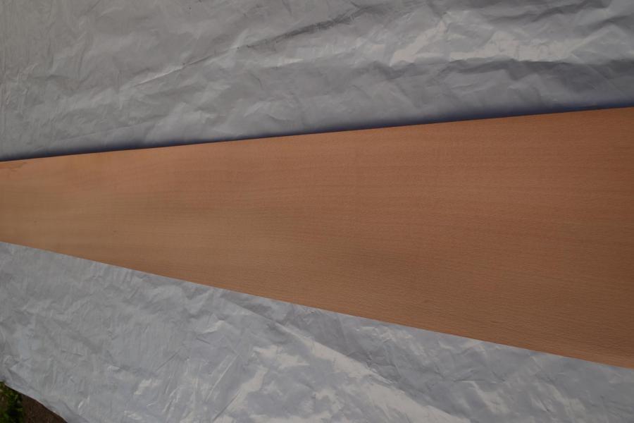 215 placage bois hetre feuille marqueterie kity lurem 3