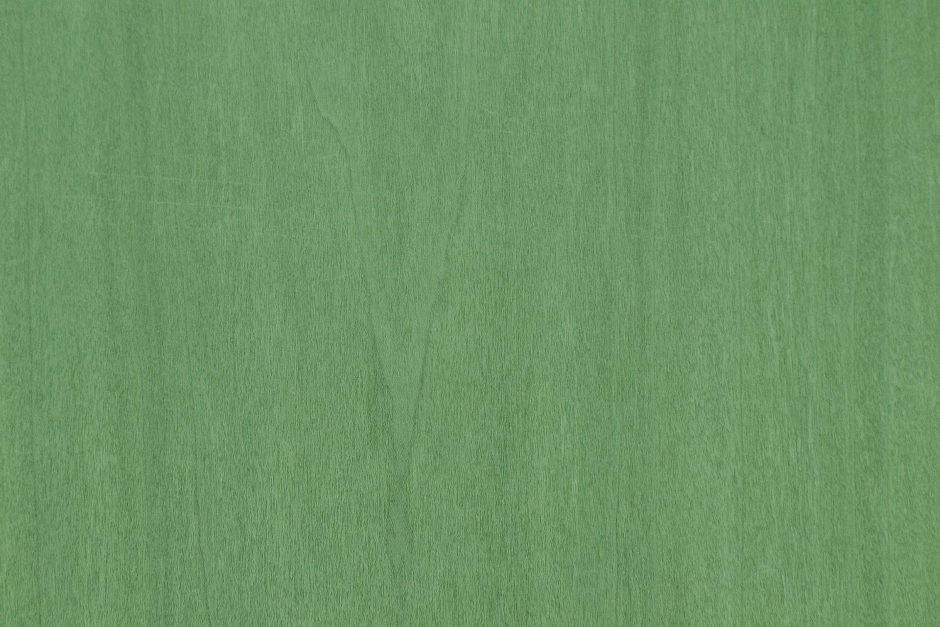 229 placage tulipier vert 2