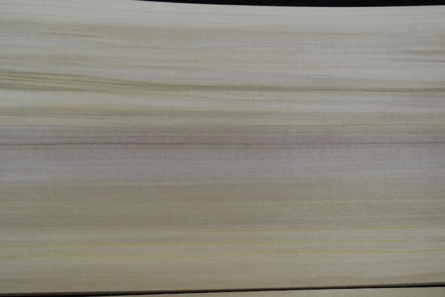237 tulipier placage bois de virginie 4