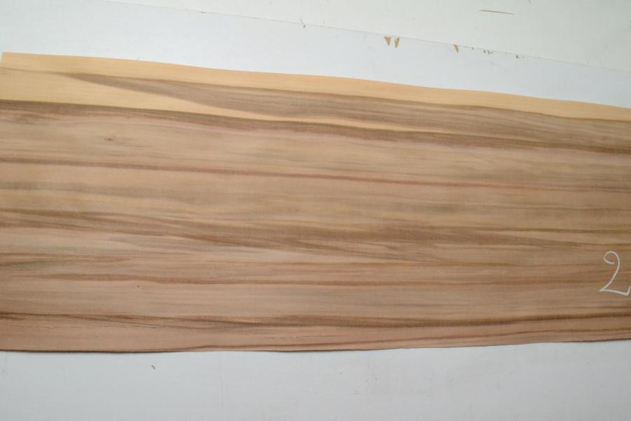 263 red gum placage bois feuille marqueterie kity lurem 2