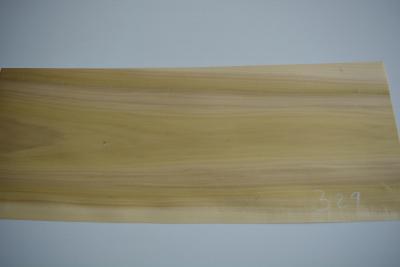 329 placage feuille de bois tulipier marqueterie luthier kity 1