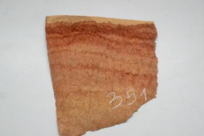 351 placage marqueterie loupe d amboine 1