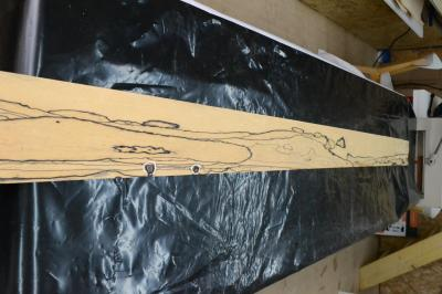353 placage ebene balnc feuille de bois 1