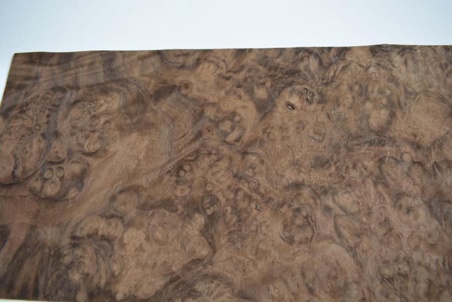 358 feuille de bois loupe de noyer des usa pour marqueterie placage bois 3