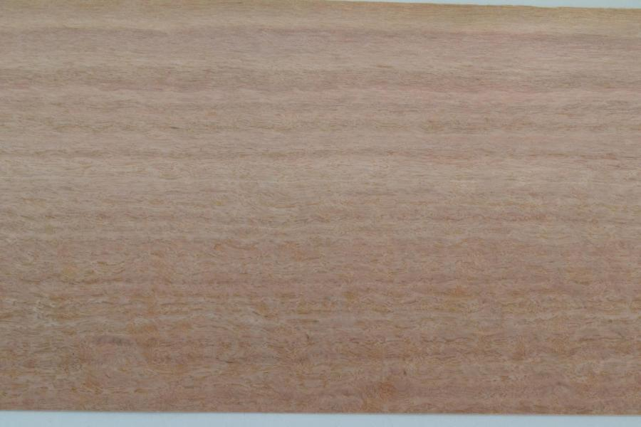 381 placage feuille de bois loupe d eucalyptus 3 1
