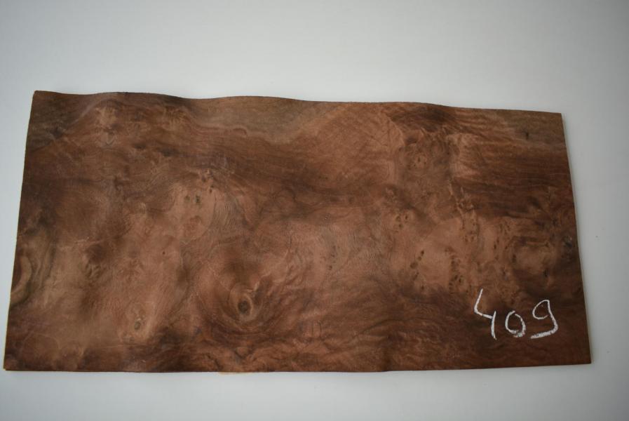 409 placage marqueterie loupe de noyer 1
