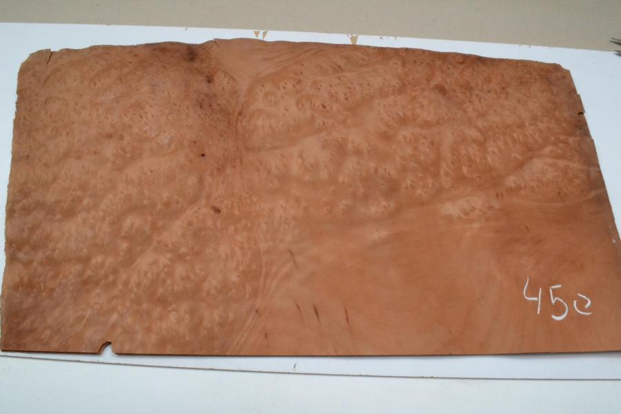 450 placage marqueterie loupe de madrona 1