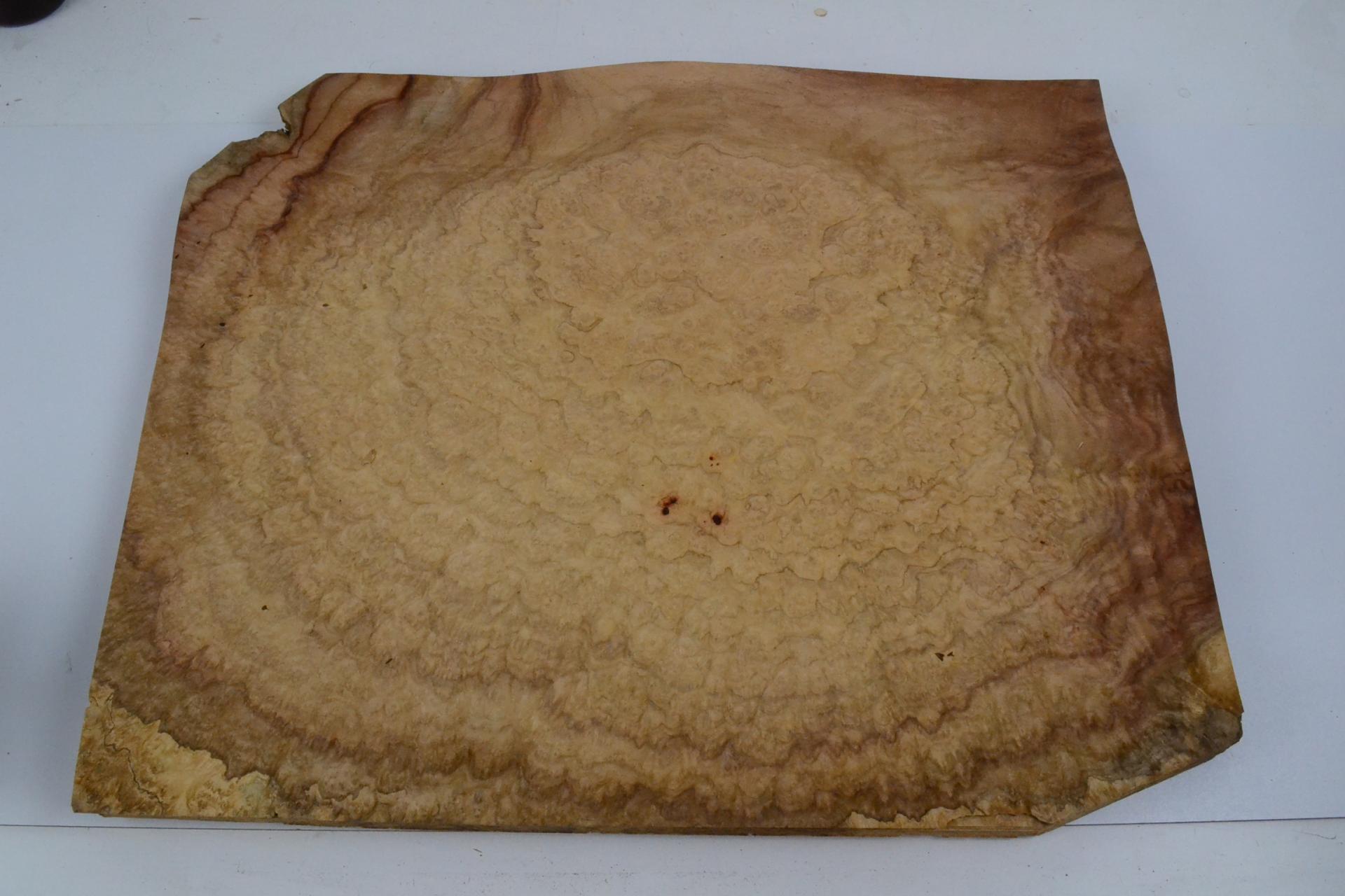 451 placage feuille de bois loupe d amboine 1
